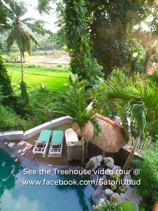 We're thrilled to be one of the most popular (and unique?) AIRBNB properties in Bali!