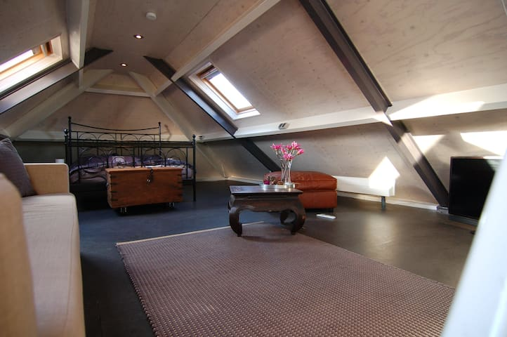Slaap en woonkamer met tweepersoonsbed en (slaap)bank