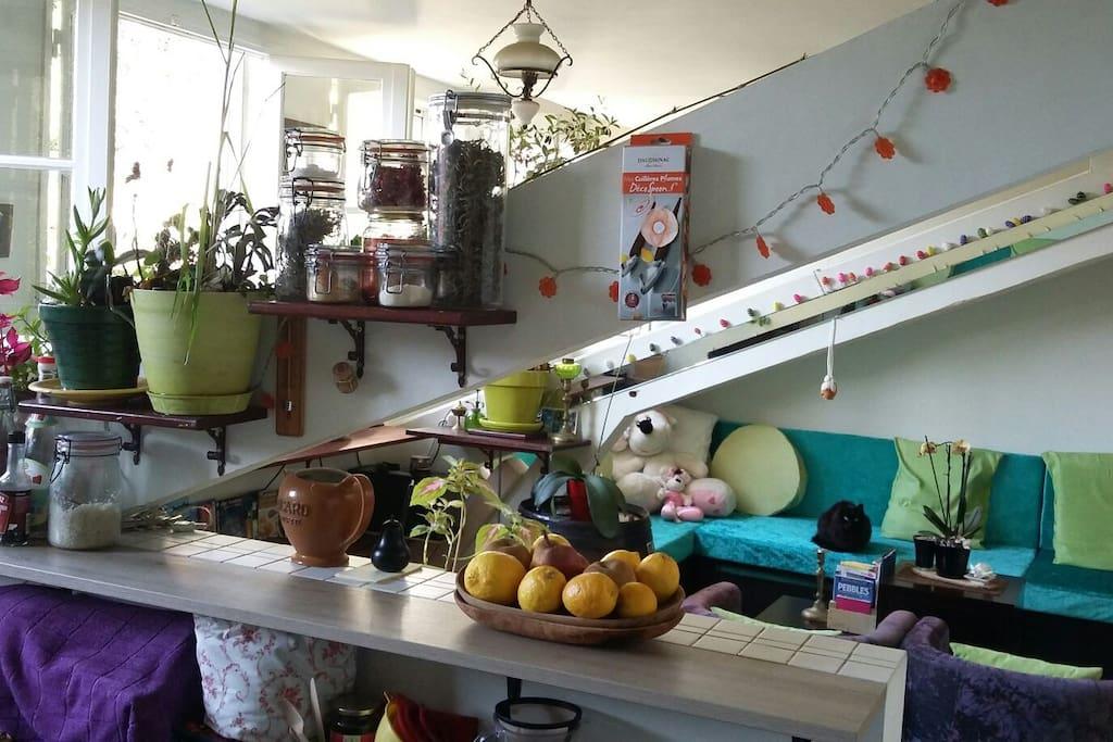 Vue du salon salle à manger de la cuisine