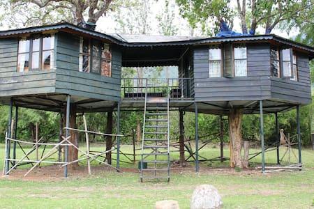 Tree House - Masinagudi
