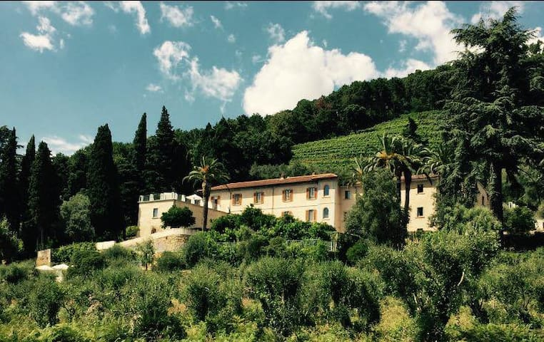 Relais & Winery Montepepe. Duplex Suite Alberico - Montignoso - Bed & Breakfast