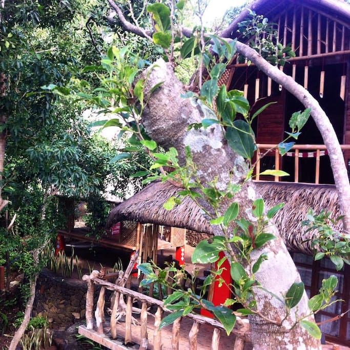 bali touch house and cozy place...