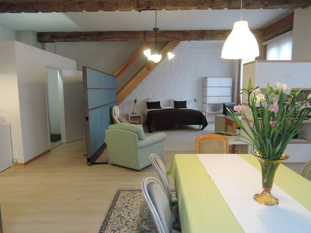 Apartment /loft up to 6 people,ideal for groups - Gante - Loft
