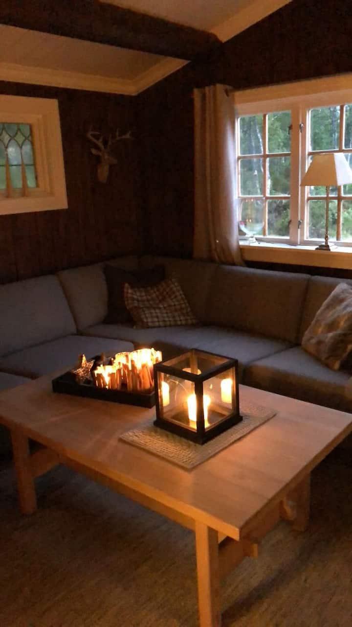 Sentral hytte i naturskjønne omgivelser på Røros