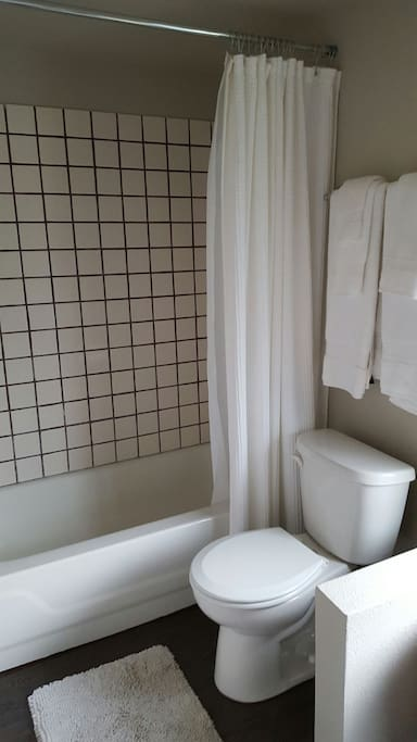 Shower with tub in large bathroom