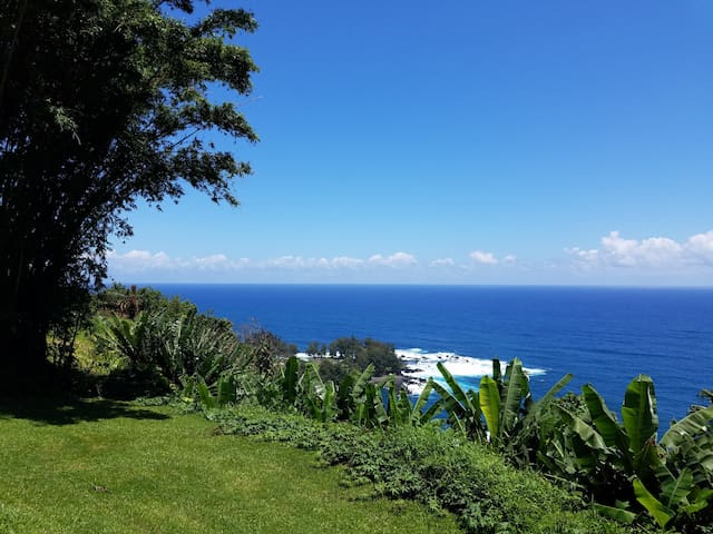 Hamakua Sea Cliff BnB, Ocean room