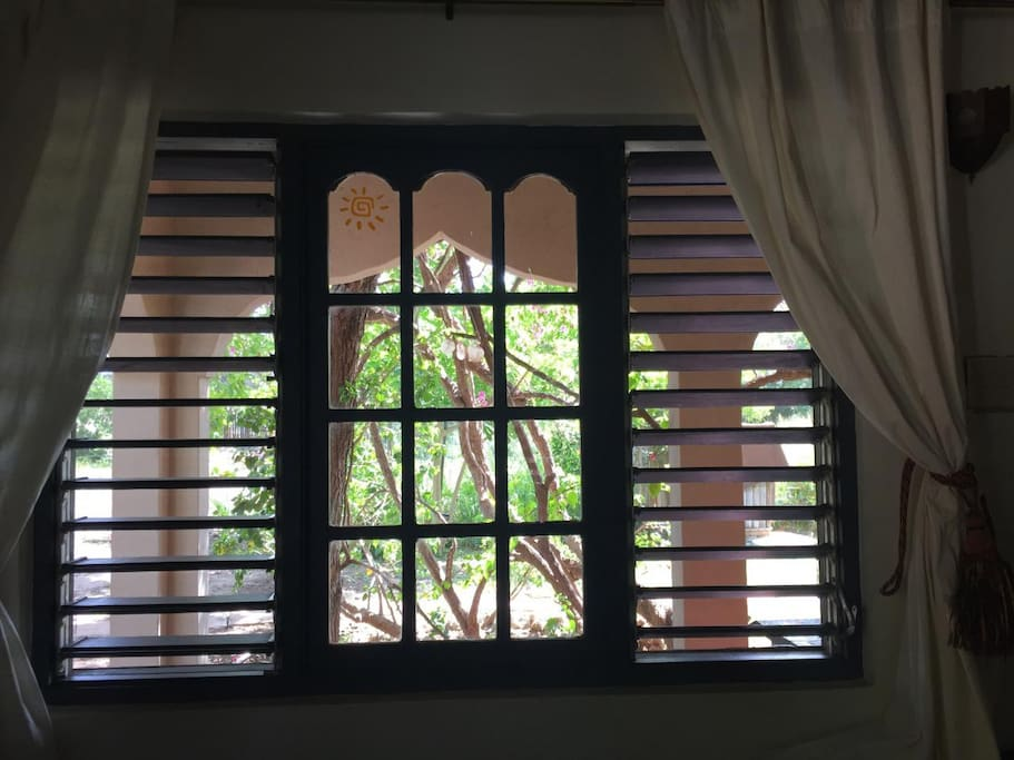 Front Windows of Habibi Room