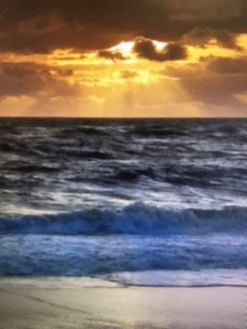 Sparkling Condo By the Sea