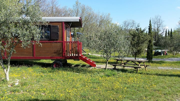 Roulotte gîte en Ardèche du Sud à Vogüé / Gorges