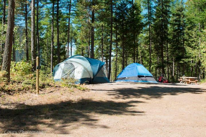 Group Tent Campsite 8 near Glacier National Park