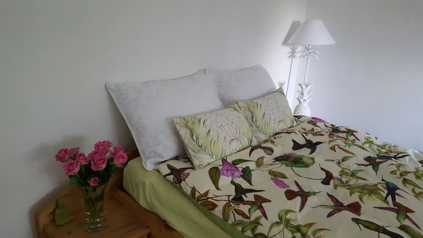 Quite nice room near beautiful nature surrounding - Chemnitz - Hus