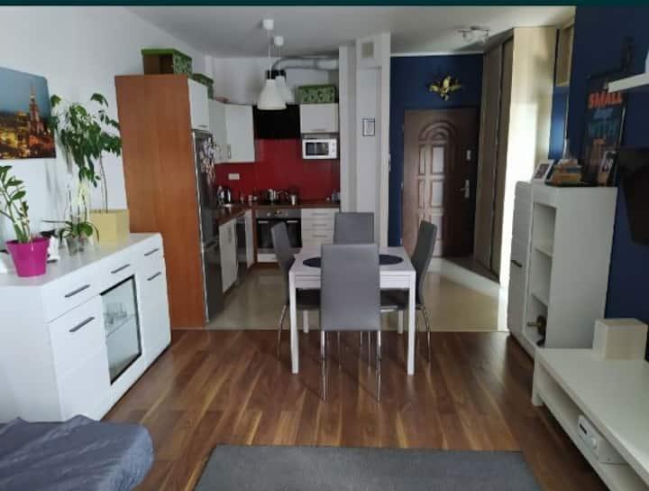 Komfortowe mieszkanie w centrum miasta
