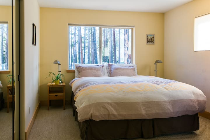 Master bedroom with forest view