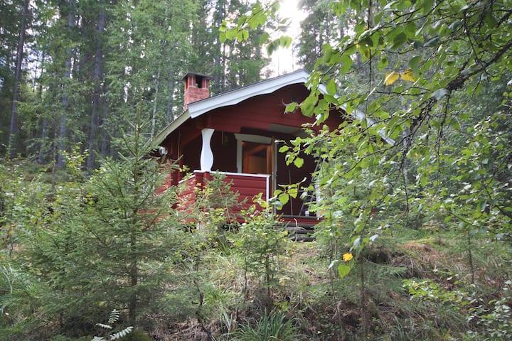 Auszeit-Oase für zwei in Dalarna (Älgstuga)