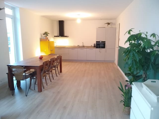 Brand new apartment