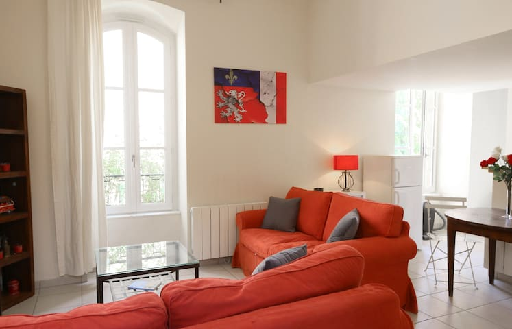 ATYPICAL PROPERTY IN OLD LYON WITH TERRACE AND VIEW ON THE SAONE
