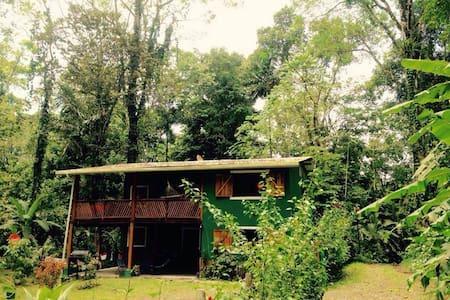 Private room in the jungle - Puerto Viejo de Talamanca - Bed & Breakfast