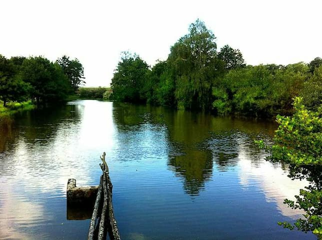 Chalet et étang, tranquillité
