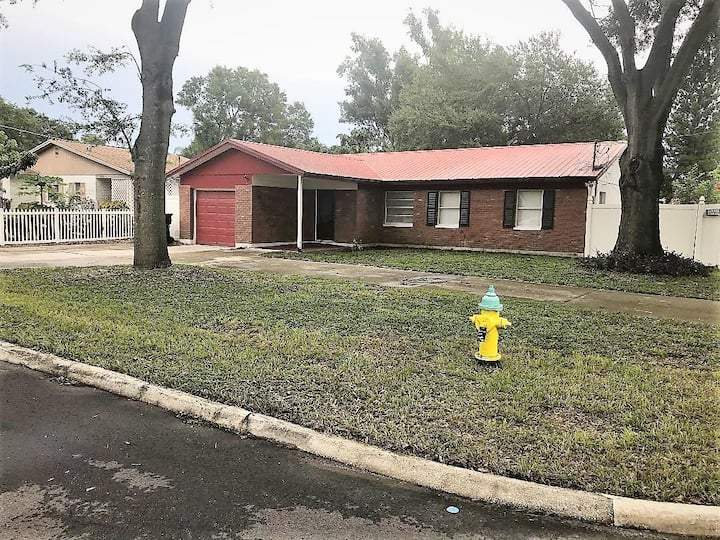"""Cute and Cozy 2  Bedroom House -South Tampa"