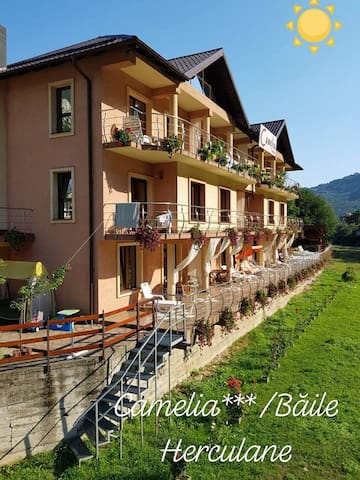 Camelia Pension - Holiday Apartments