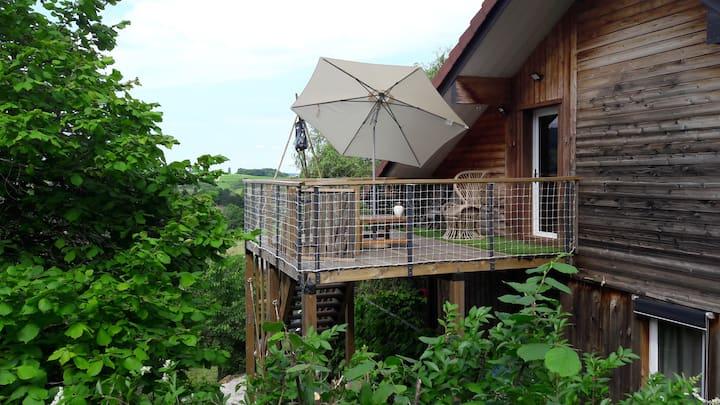 ARBOIS - Gite au figuier - studio duplex  terrasse