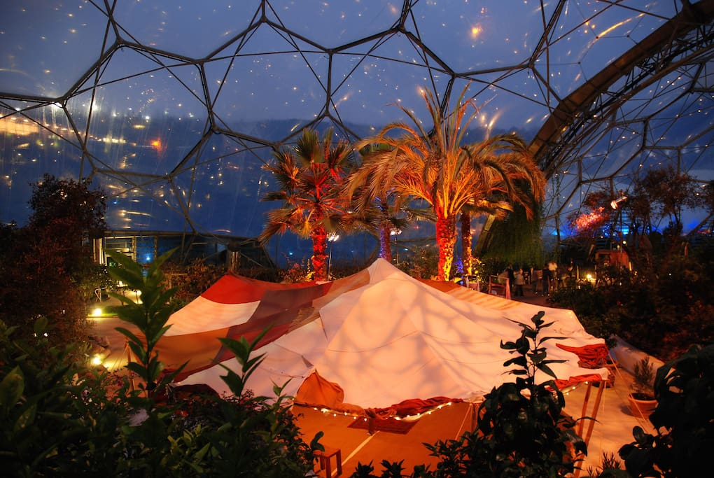 Christmas at the Eden project.
