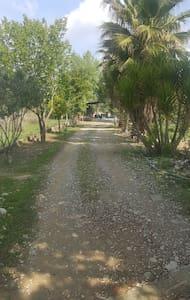 NATURLAND NOMAD - Manavgat - 牧人小屋