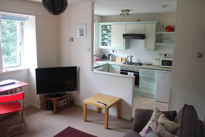 Bright flat in the city centre with free parking