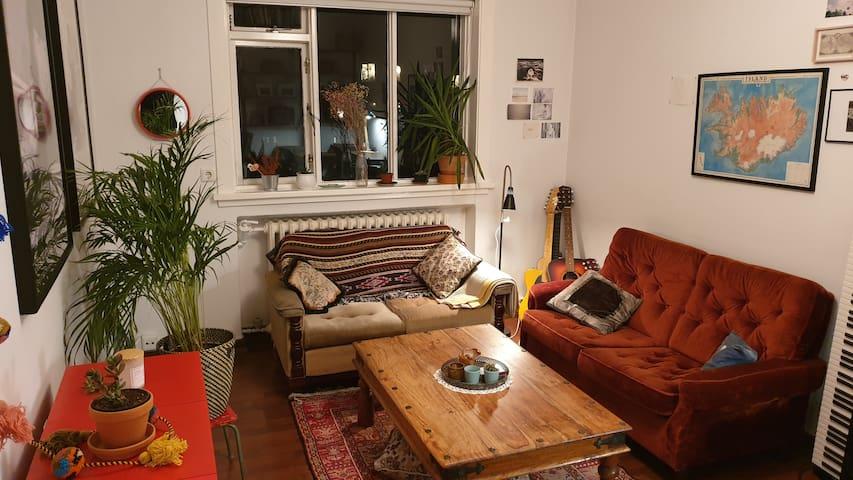 A cute little apartment - downtown Reykjavík