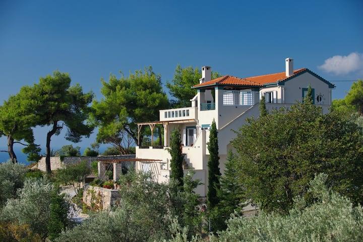 Villa Flora views exiting imagination apartment 2