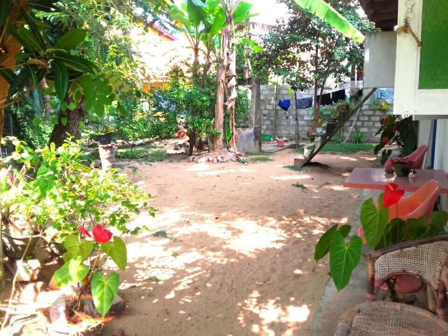 The garden with lots of fruit trees, your personal chillout area