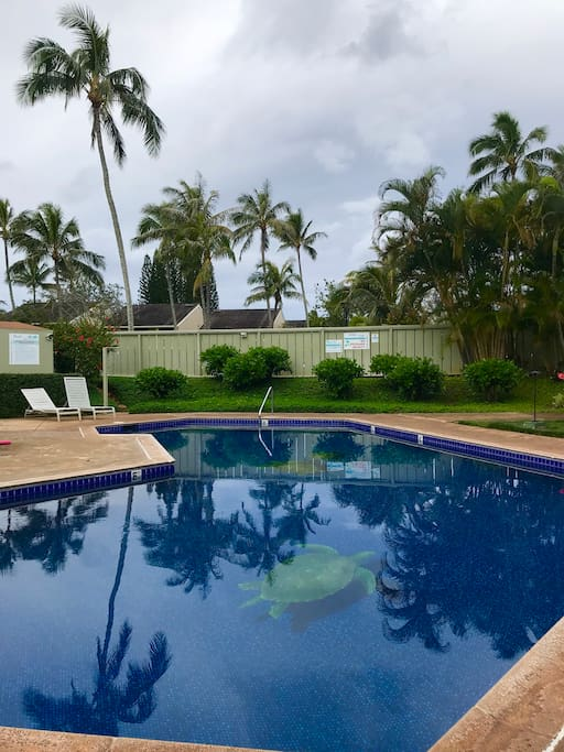 Take a dip in the heated private pool between the hours of 8 am and 10 pm.