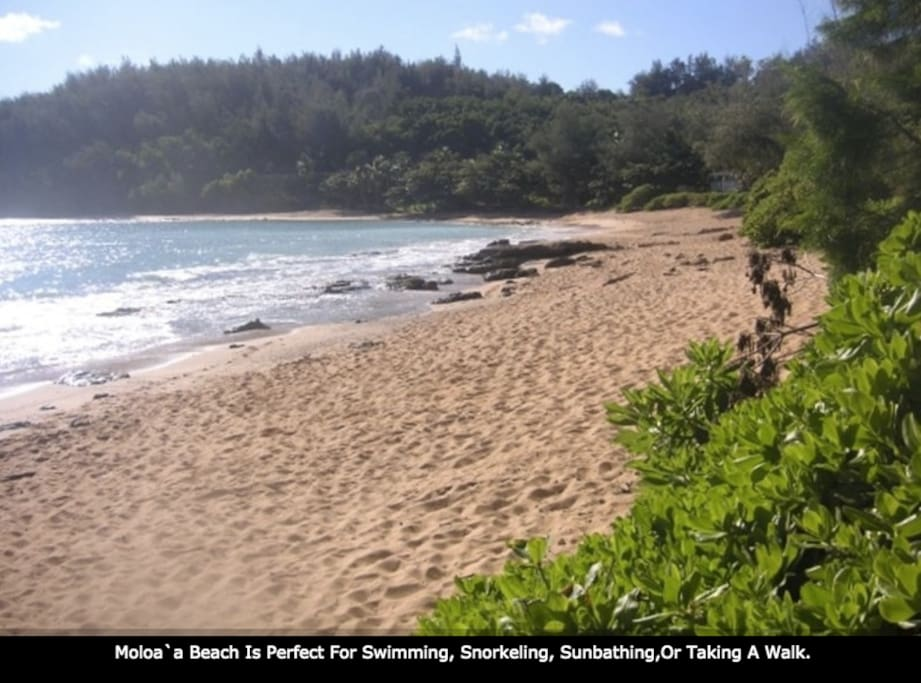 Moloa'a Beach Is Perfect For Swimming, Snorkeling, Sunbathing, Or Taking A Walk.