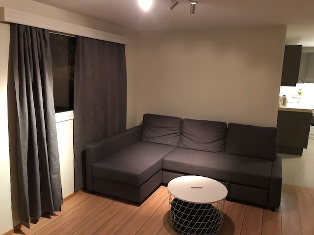 A place for amigos ( basement apartment)