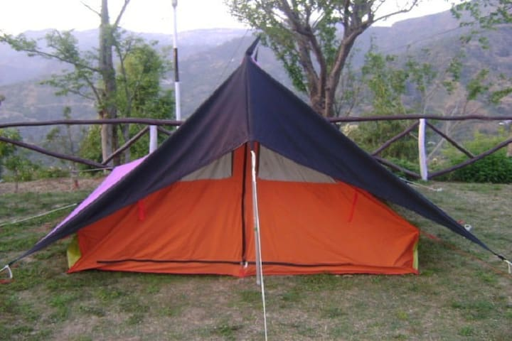 Tents Camping World In Adventure of jungle - Shoghi