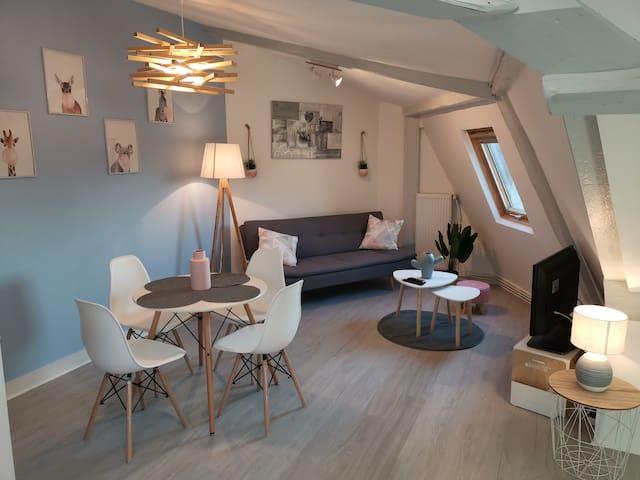 «L'Emeraude», F2 cosy au coeur de Caen