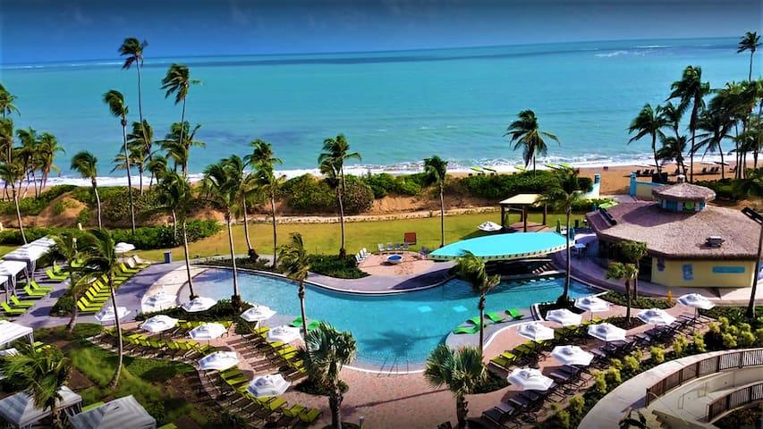 Studio: Tropical Escape to Puerto Rico Awaits You!