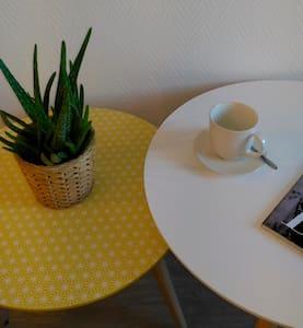 STUDIO TRÈS COSY EN HYPER CENTRE