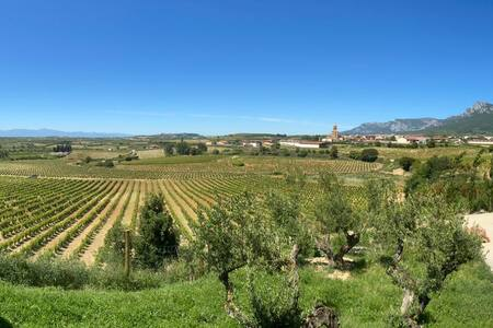 Idyllic Estate Winery and Vineyards