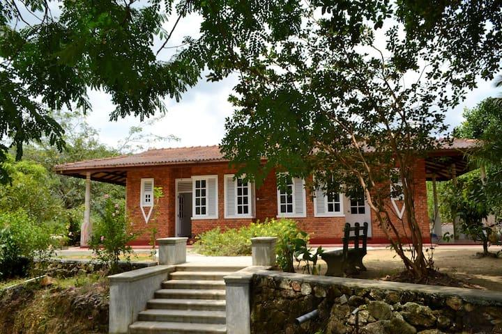 Villa 4 Sinharaja