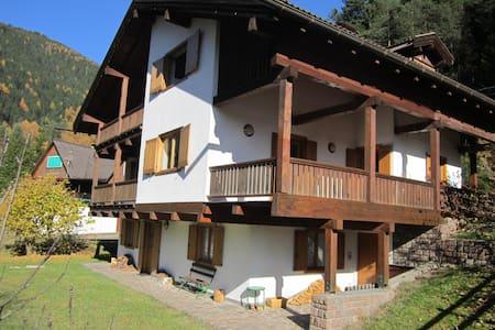 Appartamento con terrazzo in villa - Stava