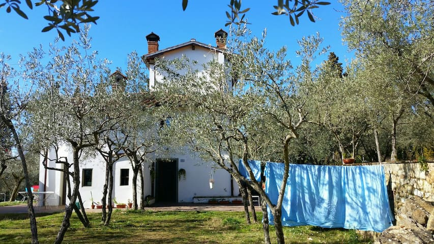 Lovely peaceful house in nature - Greve in Chianti - Daire