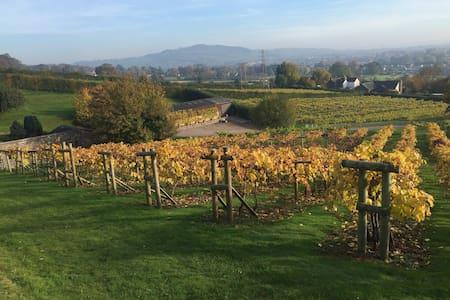 Vine Cottage - Monmouthshire - Jiné