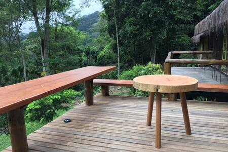 Rain Forest Paradise