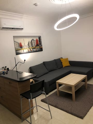 One Bedroom Apartment for rent-VIP