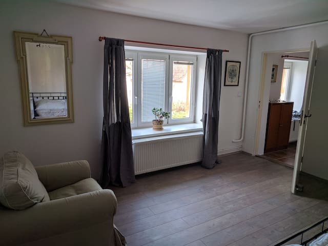 Large 2 room apartment near romantic Prague. - Buštěhrad - Byt