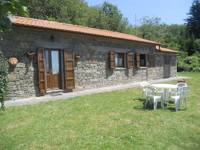 Rustico in montagna: affitto per uso turistico - Marliana - Lejlighed