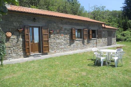 Rustico in montagna: affitto per uso turistico - Marliana - Apartamento