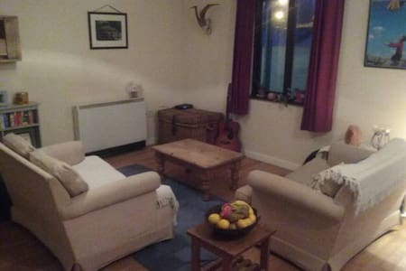 City centre apartment in the heart of galway - Galway - Apartment