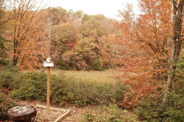 Outdoor Deck Photo 5 of 7